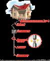 Комплект н/ж заземления частного дома ZUVER 4.4